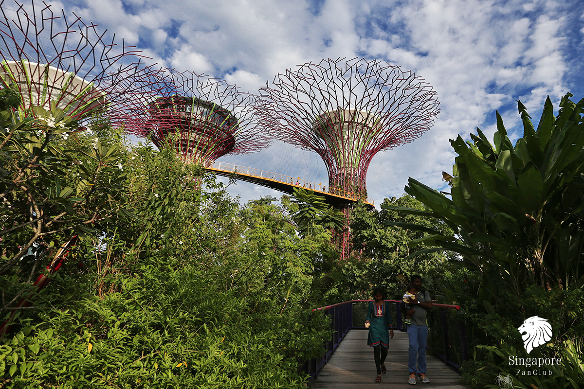 Supertree Gardens by the Bay