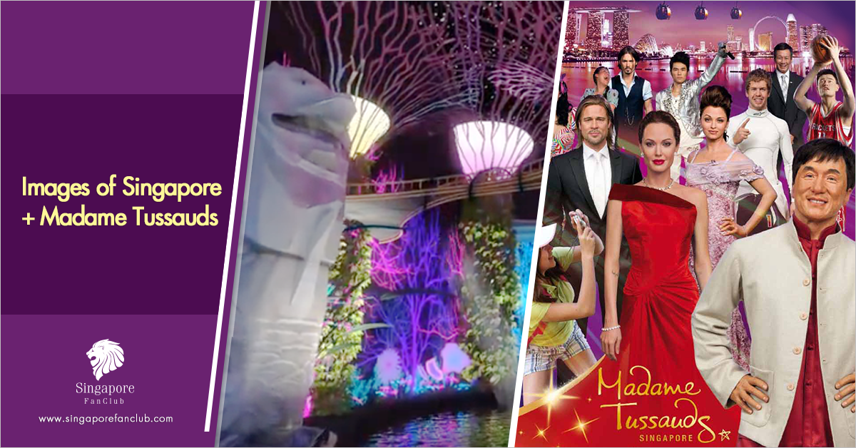 Madame Tussauds+Images of Singapore
