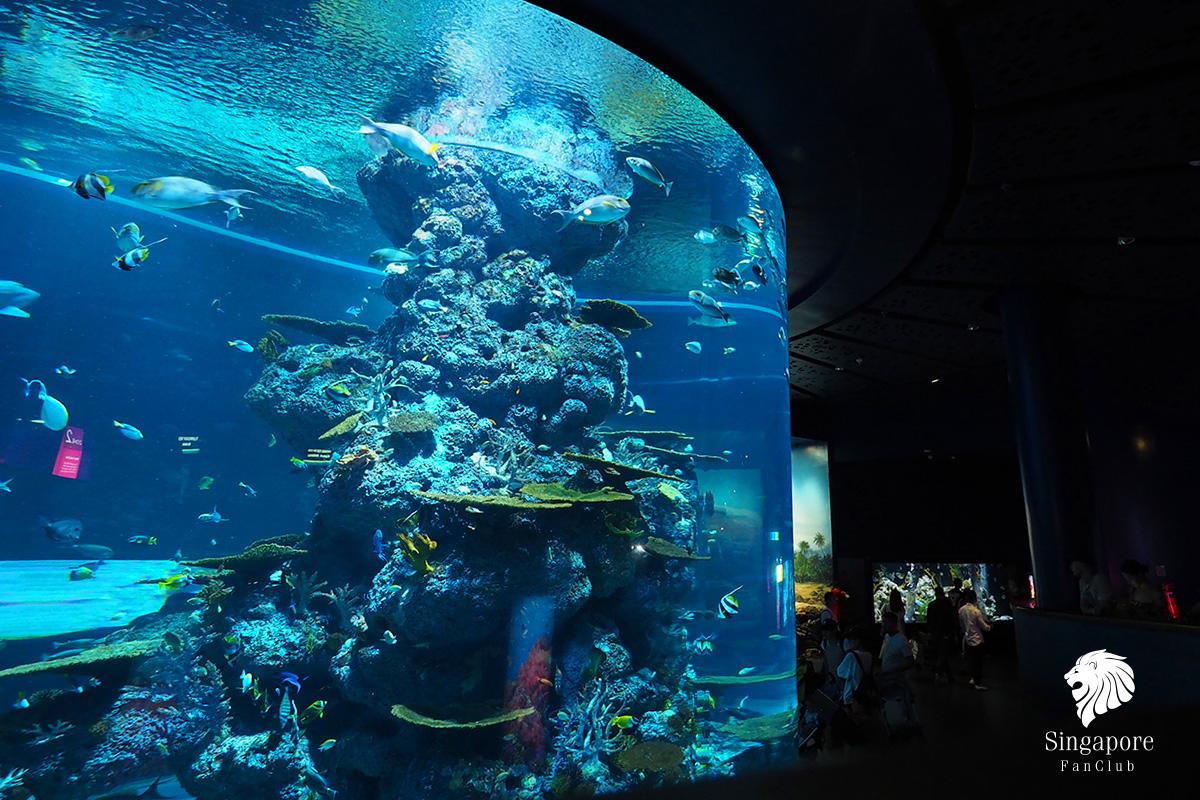 รีวิว SEA Aquarium
