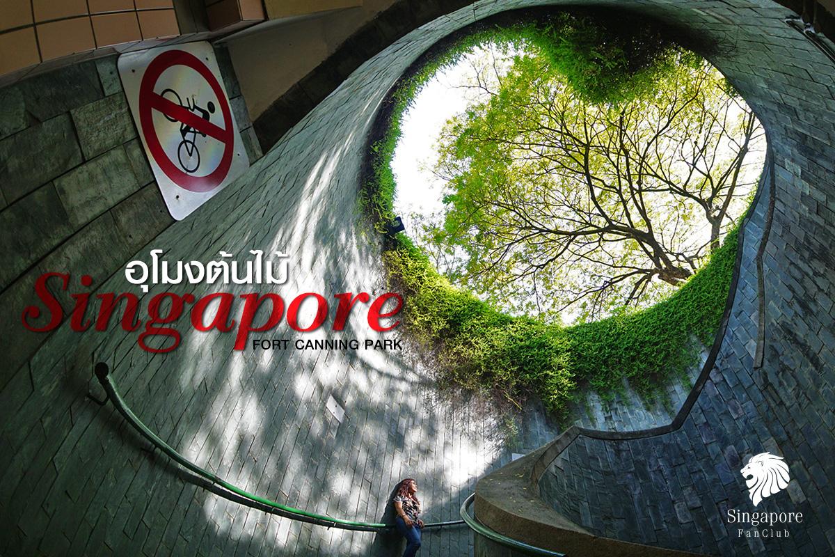อุโมงค์ต้นไม้ สิงคโปร์ Fort Canning Park